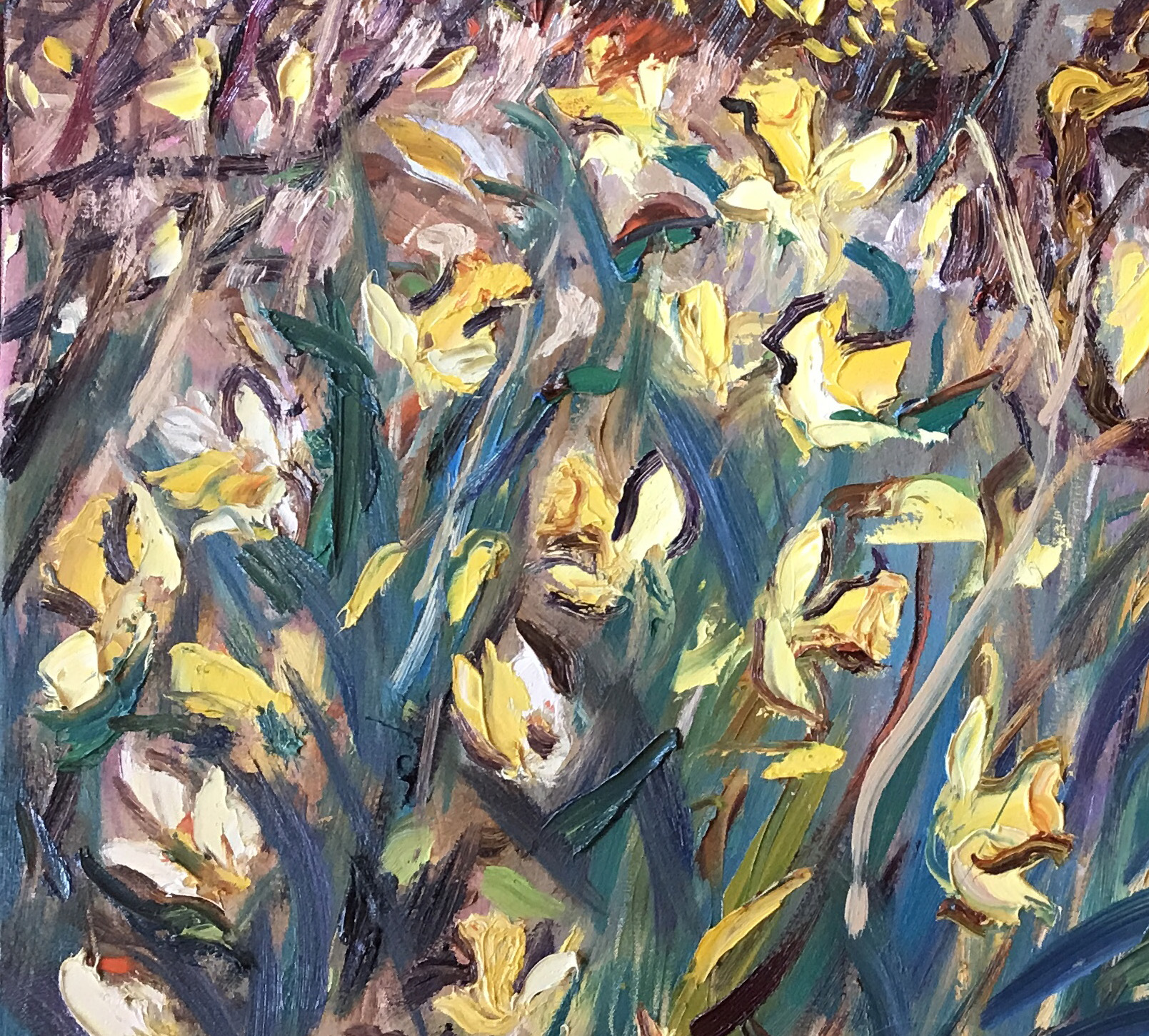 first daffodils, seagreens by David Mackie Cook – main